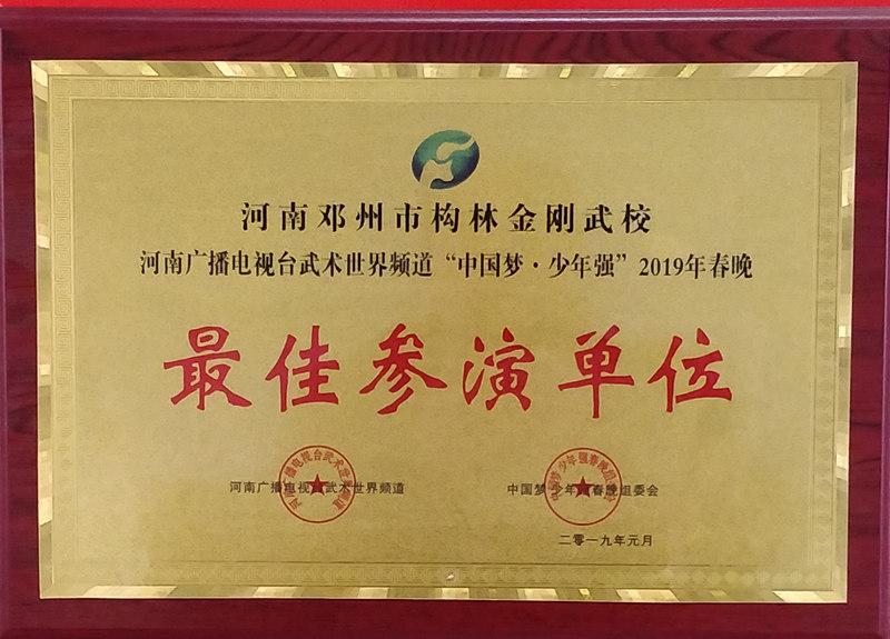 2019年河南电视台春晚获奖荣誉