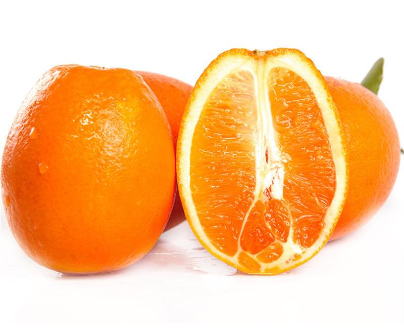 宜昌脐橙代办