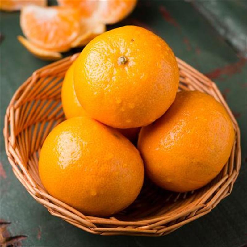 糖尿病患者能不能吃橘子,答案就在这里
