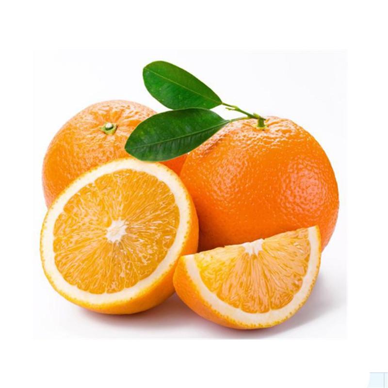 宜昌金品富川脐橙