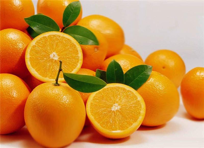 宜昌夏橙销售
