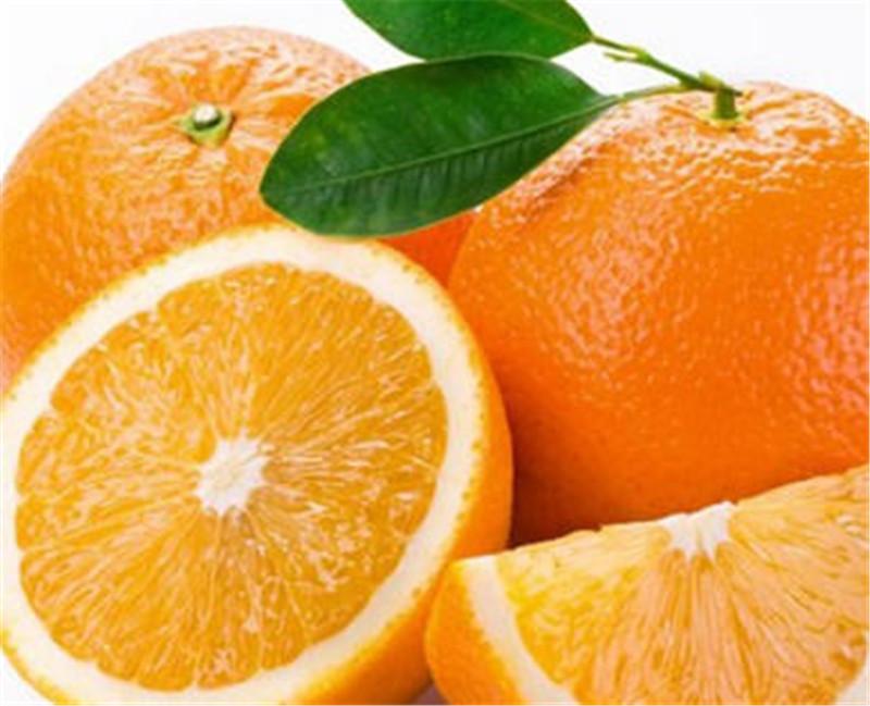 脐橙一件代发费用
