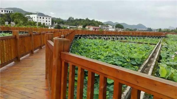 西安防腐木围栏
