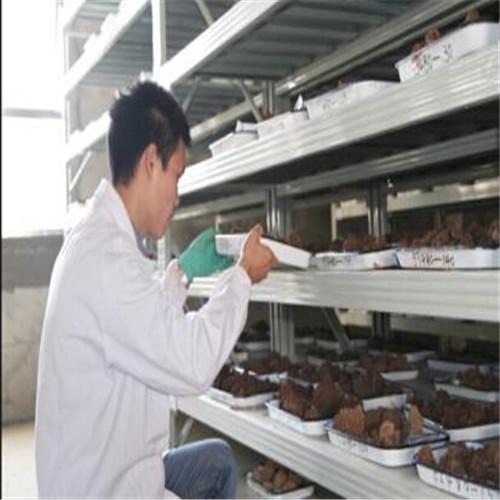 新疆环境验收检测步骤