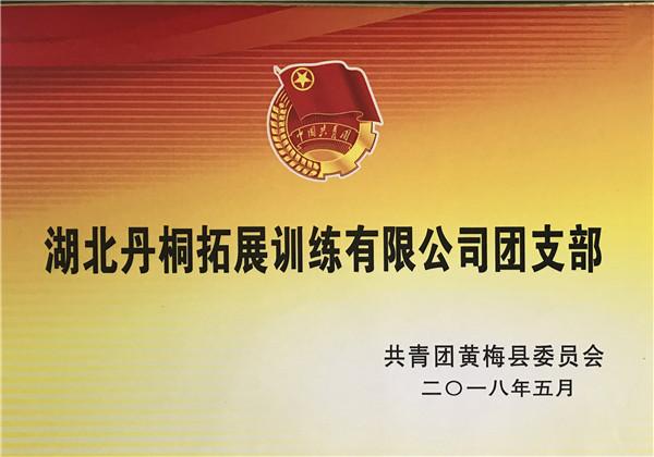 湖北丹桐拓展训练有限公司团支部