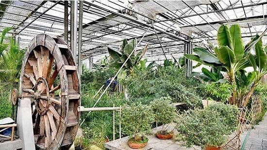 呼和浩特市赛罕区都市现代农业园区。陈立庚 摄