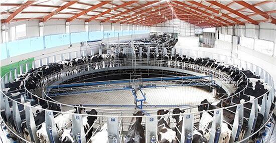 图为蒙牛工业园区。呼和浩特市农牧局供图