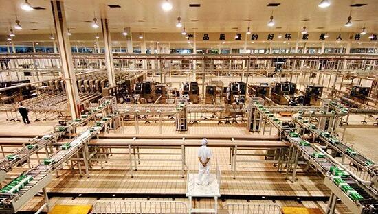 蒙牛全自动生产线。呼和浩特市农牧局供图