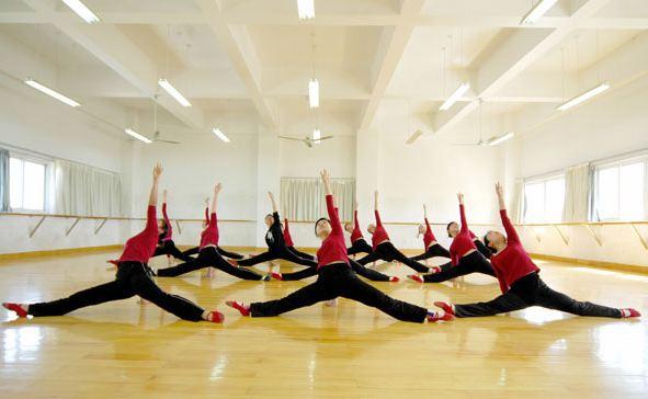 舞蹈艺考教育