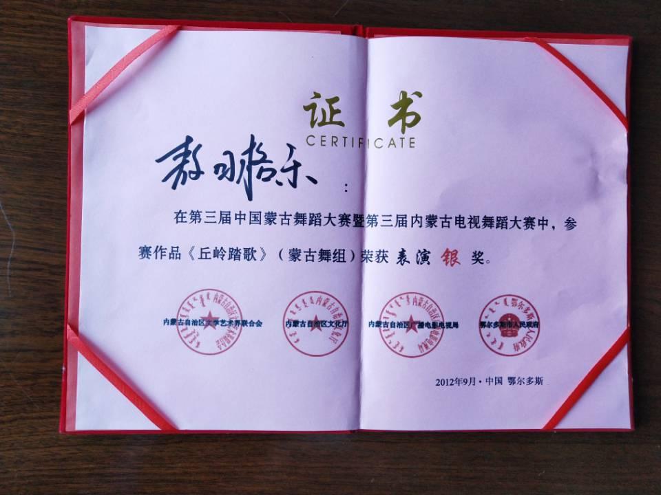 第三届内蒙古电视舞蹈大赛表演银奖