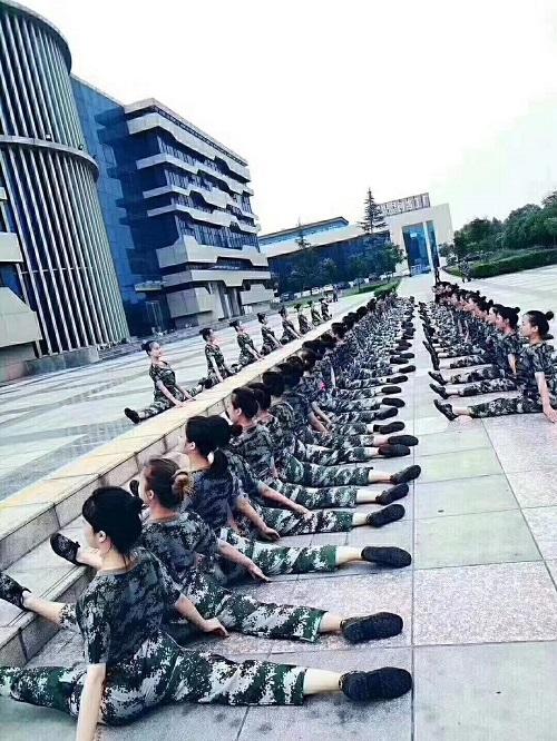 舞蹈教育培训