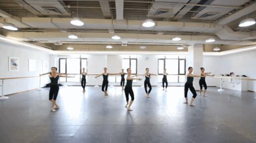 内蒙古映日荷花舞蹈艺考训练