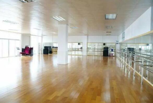 舞蹈艺术学校练舞室
