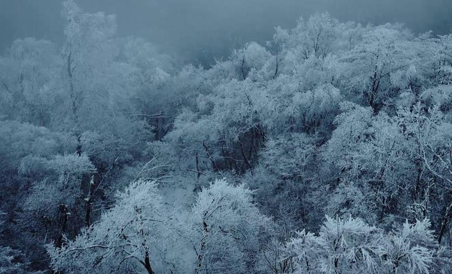 龍頭山景區冬季宣傳片——宣傳片制作