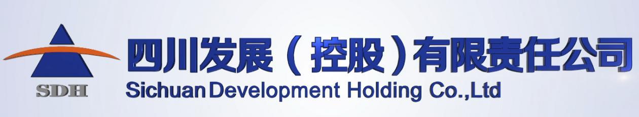 四川發展控股有限公司
