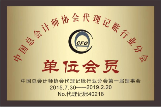 中国总会计师协会代理记账行业分会会员单位