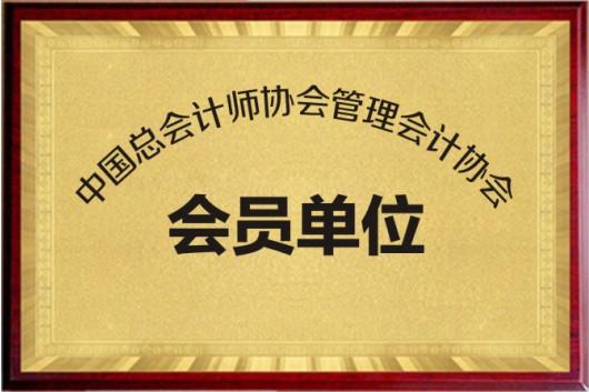 中国总会计师协会管理会计协会会员单位