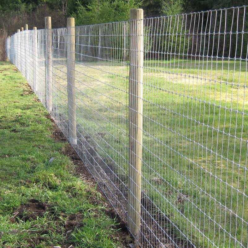 我司在一处园林安装的四川钢丝网