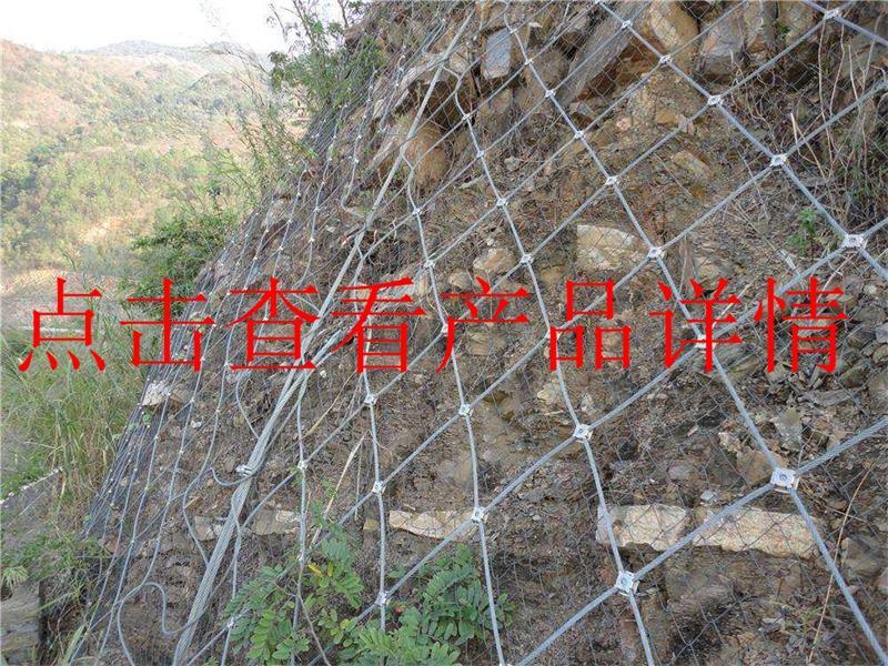 四川边坡防护网厂家