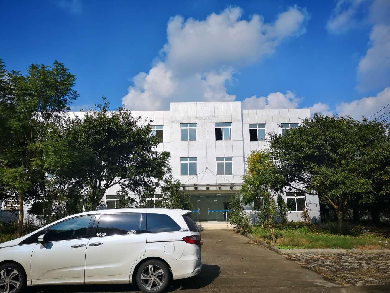 pvc瓦生产员工会议大楼