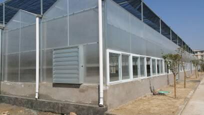 阳光板连栋温室(PC板)