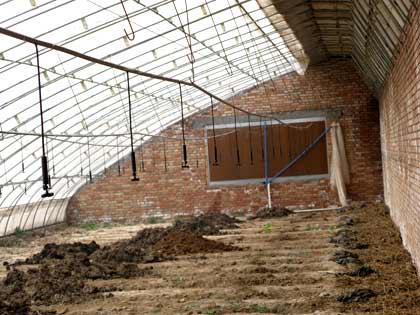 陕西温室常青建设