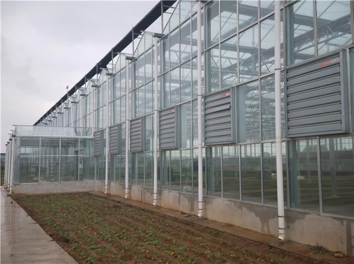 陕西温室建设