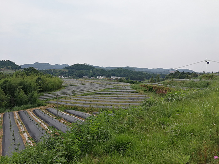陕西节水灌溉设备