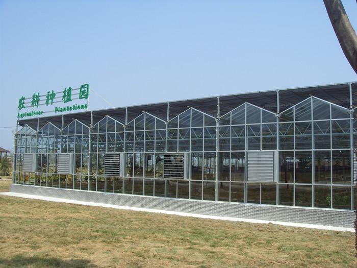 陕西温室建设常青口碑赞 值得推荐