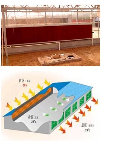 陕西温室降温系统
