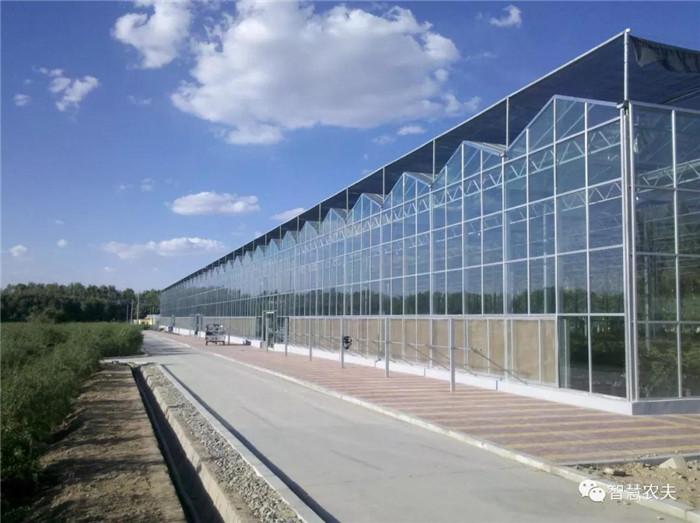 日光温室大棚文洛式玻璃温室
