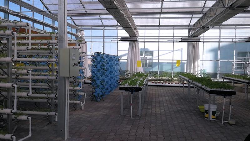 陕西生态温室