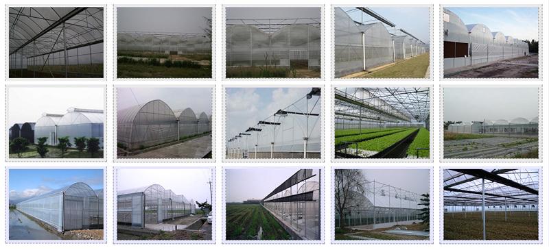 薄膜连栋温室相册-全图列表式