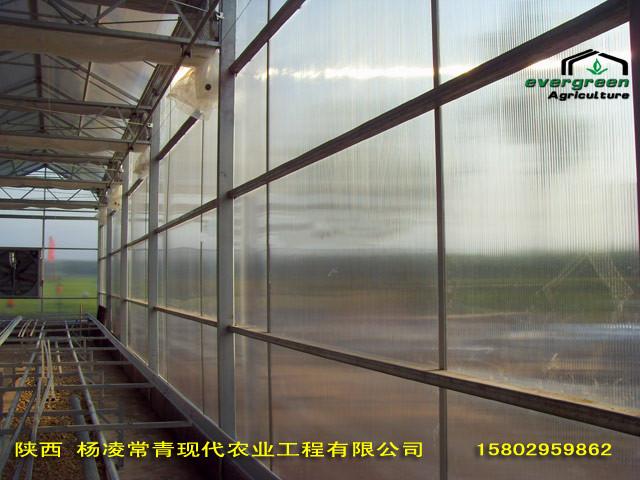 西安鲜花港阳光板连栋温室