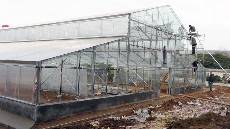 植物园异型温室