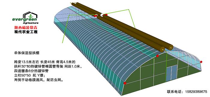 大跨度保温型拱棚