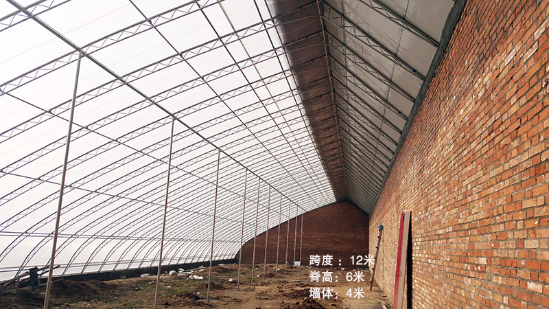 传统双弦管12米日光温室