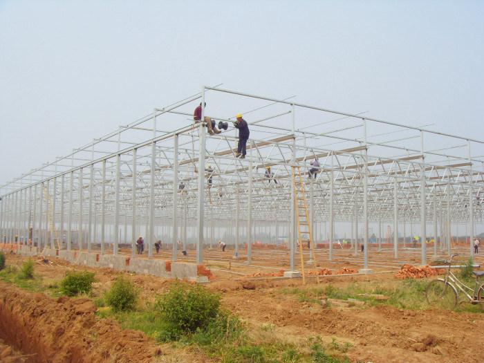 陕西玻璃连栋温室农业博览园