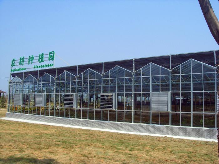 陕西玻璃连栋温室