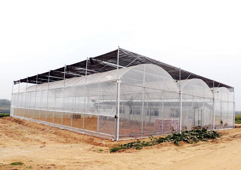薄膜连栋温室建设
