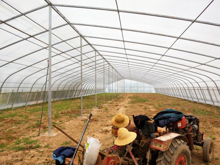 陕西温室-大跨度双拱双膜棚
