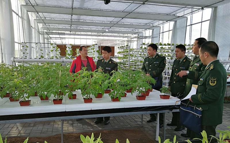 陕西温室-生态休闲智能玻璃连栋温室