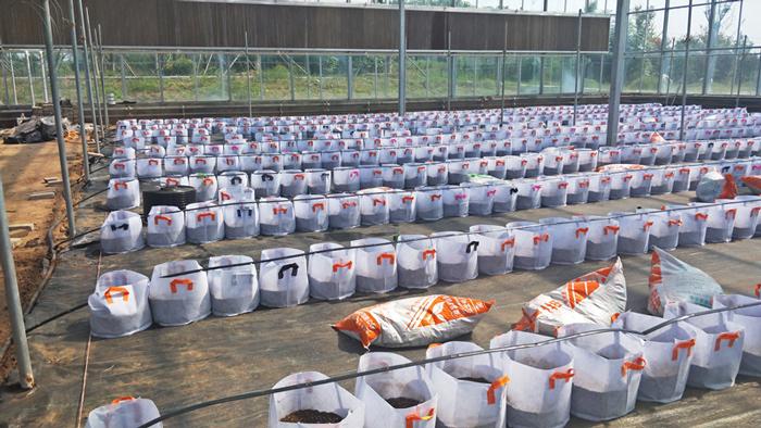温室水肥一体化