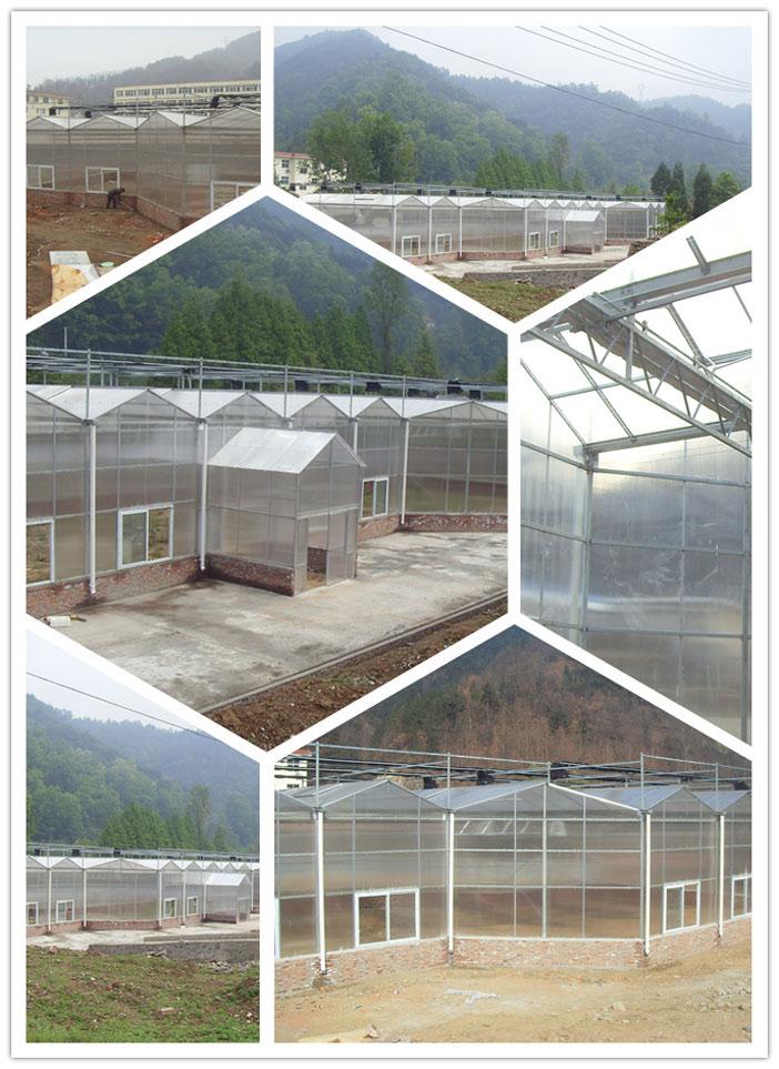 陕西温室-异型阳光板温室