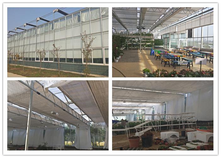 连栋温室的内保温被系统