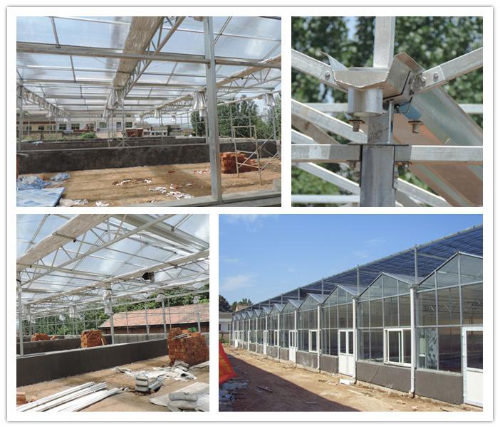 玻璃连栋温室的优点与用途