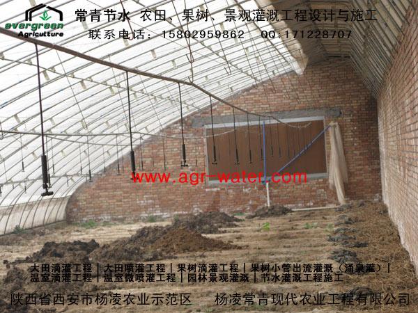 陕西滴灌-温室灌溉-温室微喷