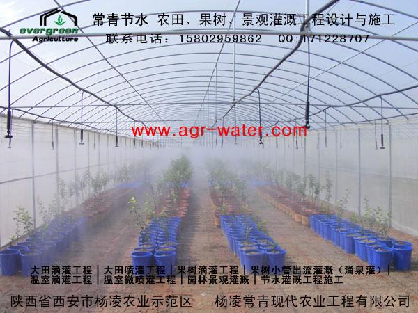 陕西滴灌-温室灌溉1