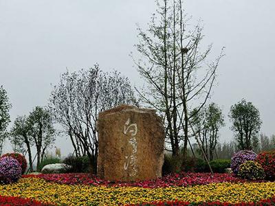 锦程腾飞合作客户:湿地公园