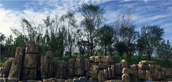 四川假山景观:华阳七中客户见证
